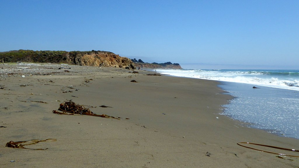 San-Simeon-State-Beach-08.JPG