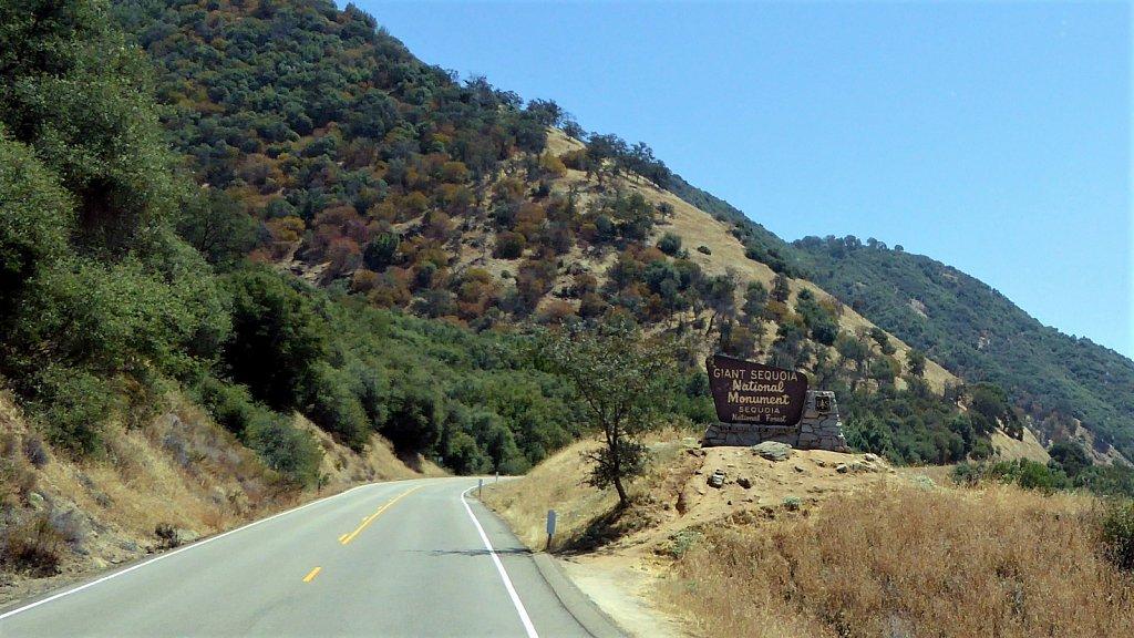 Sequoia-National-Park-008.JPG