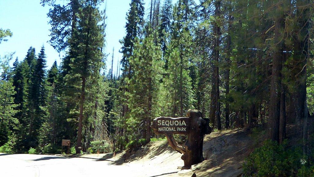 Sequoia-National-Park-015.JPG