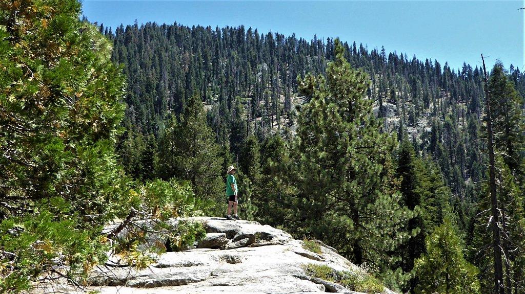 Sequoia-National-Park-032.JPG