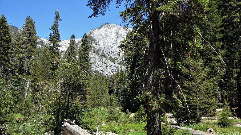 Sequoia-National-Park-036.JPG