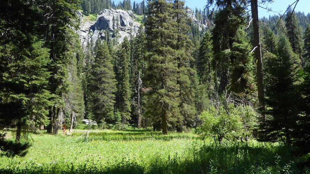 Sequoia-National-Park-043.JPG