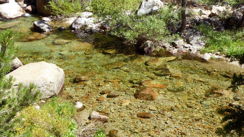 Sequoia-National-Park-045.JPG