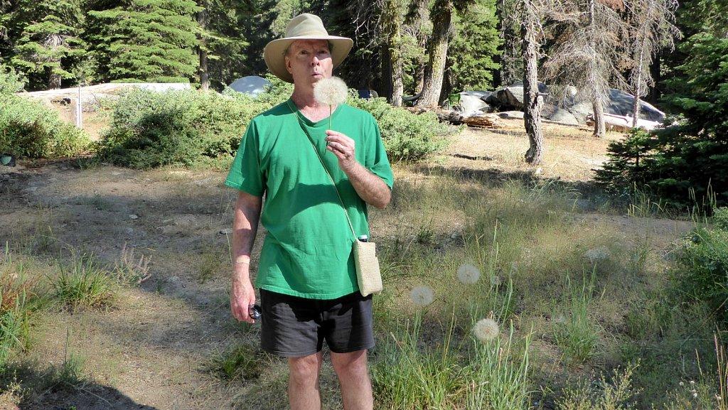 Sequoia-National-Park-058.JPG