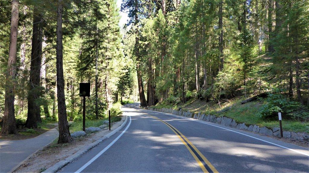 Sequoia-National-Park-090.JPG